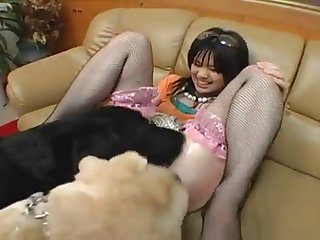 2 Dogs Licking The Pussy Of Young Japanese