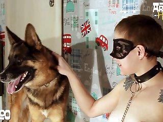 Amateur Dog porn Brunette